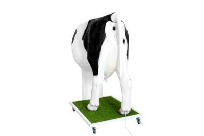 MZ02390 - Krava Emma - pokročilý simulátor pre insemináciu kravy
