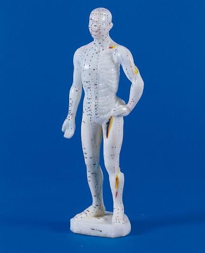 Mužská figurína pre akupunktúru, 26 cm