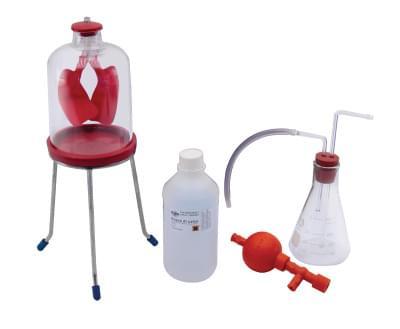 7017 - Sada pre pokusy s dýchaním
