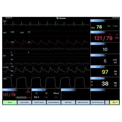 8000969 - Simulátor obrazovky pacientskeho monitoru CARESCAPE™ B40 pre REALITi360
