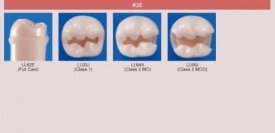 Model zubu pre prípravu piliera mostíka a čistenie zubu pred výplňou (zub č. 36)