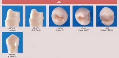 Model zubu pre prípravu piliera mostíka a čistenie zubu pred výplňou (zub č. 44)