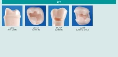Model zubu pre prípravu piliera mostíka a čistenie zubu pred výplňou (zub č. 27)