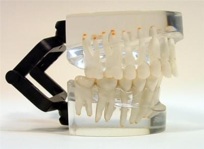 MDO-13 - Ortodoncia - trieda II - div. 1