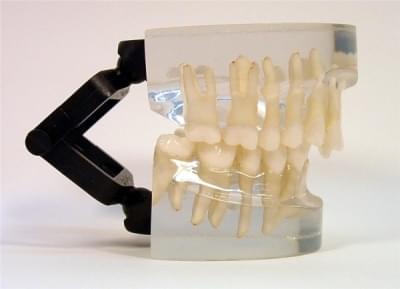 MDO-14 - Ortodoncia - trieda II - div. 2