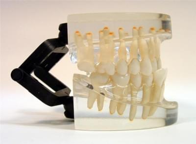 MDO-17 - Ortodoncia - trieda III