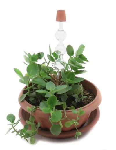 5666 - Sada pre ukážku tlaku v koreňoch rastlín