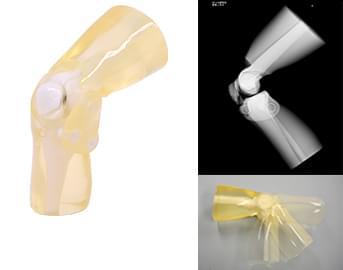 41926-190 - Pravé koleno (priehľadné)