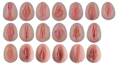 L222 - Odliatky ženských genitálií pre ukážku anatomických odlišností