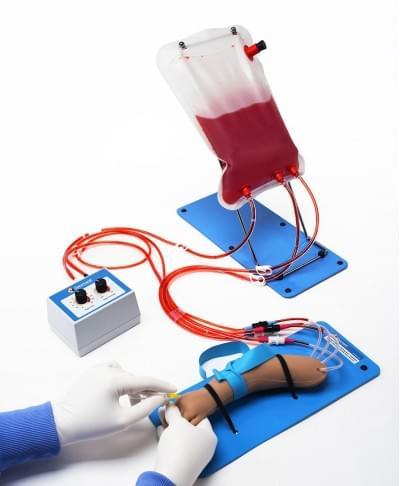 S408.100.PK - Model paže novorozence pro IV a arteriální přístup