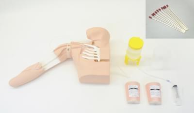 Simulátor pre nácvik obvodového zavádzania centrálneho žilného katétra vedeného ultrazvukom