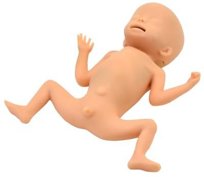 MW33 - Simulátor starostlivosti o dieťa s extrémne nízkou pôrodnou hmotnosťou