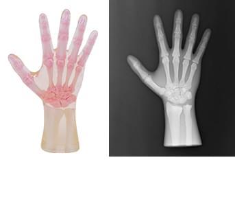 41926-030 - Pravá ruka (priehľadná)
