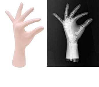 41926-050 - Ľavá ruka (priehľadná)
