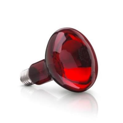 Žárovka k infralampě